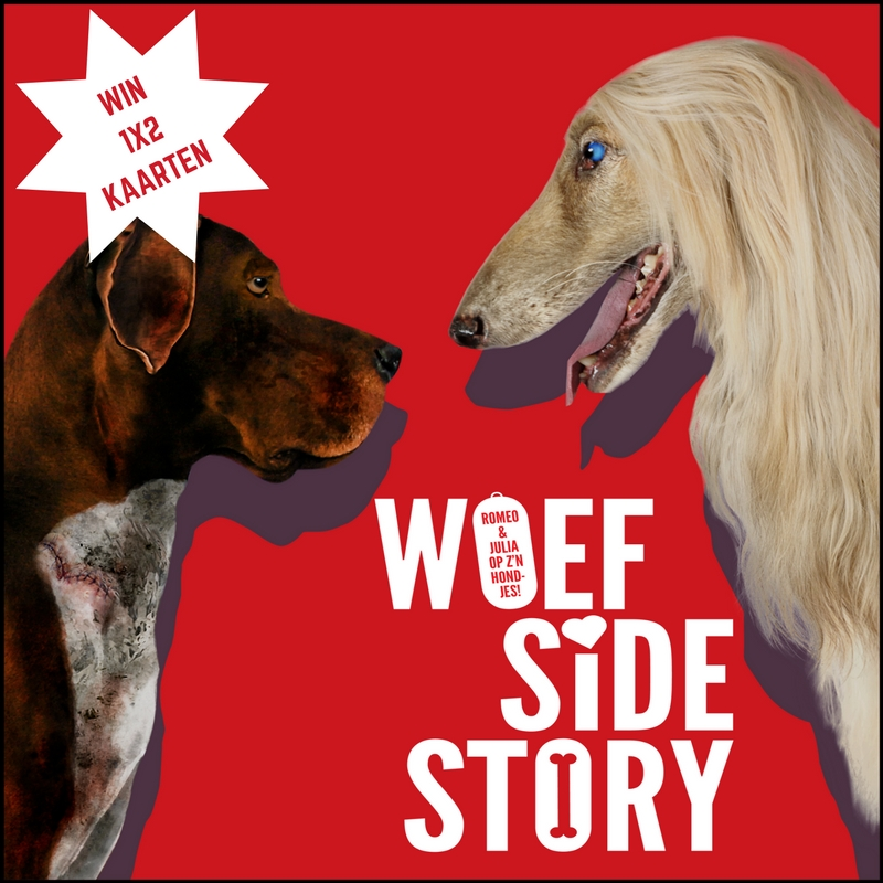Woef Side Story